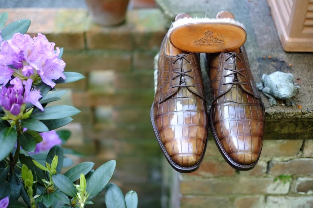 Extravagantní boty z krokodýla - s tmavě hnědými tkaničkami. Zdroj: dandyshoecare.tumblr.com