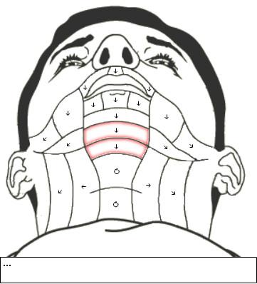 Příklad mapy vousů.